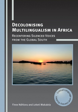 Jacket Image For: Decolonising Multilingualism in Africa
